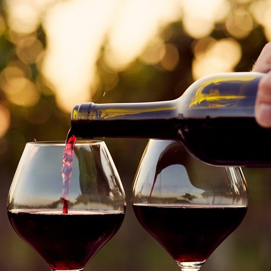Istrian_Wine_tour11