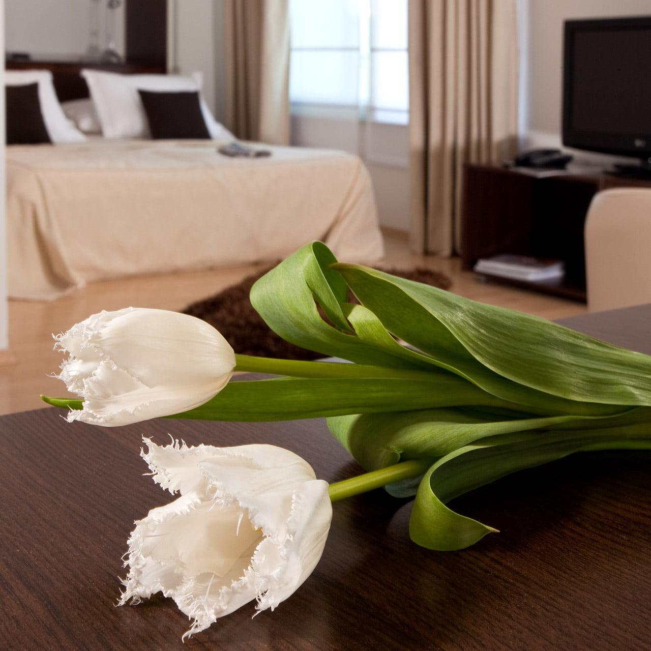 Villa A9nette Classic Suite 009